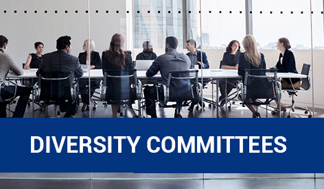 property-council-australia-diversity-committees.png