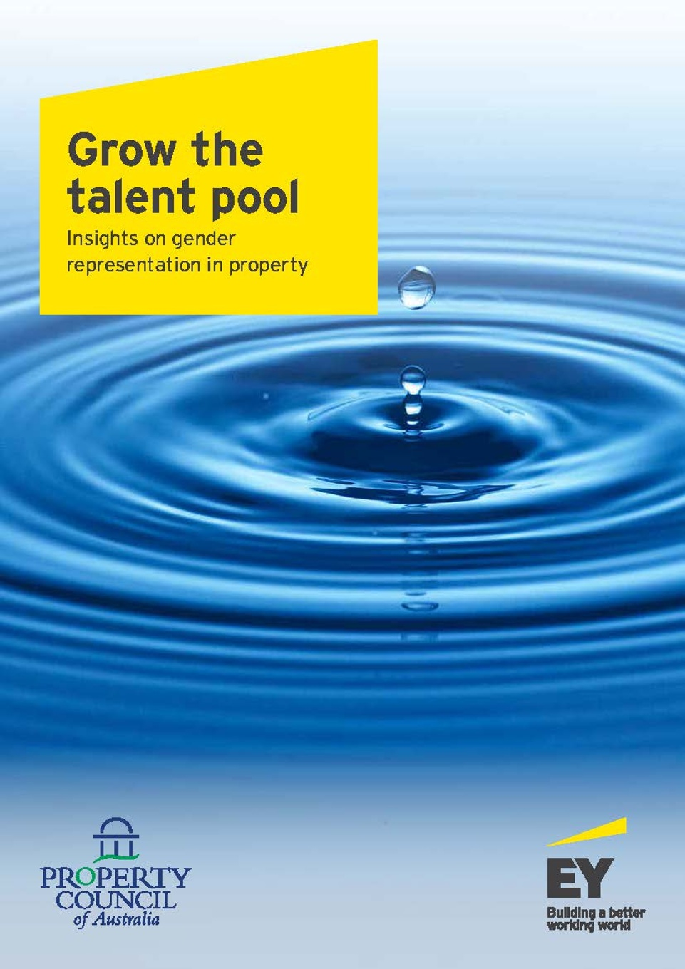 Grow the talent pool full report 2016