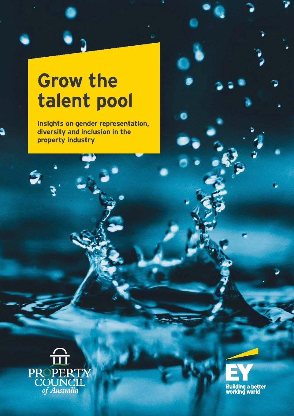 Grow the talent pool full report 2018